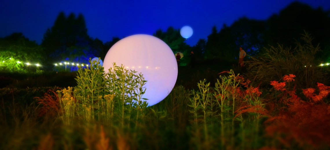 Weather balloons in a green scene